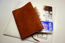 tuchiya_book_cover_02